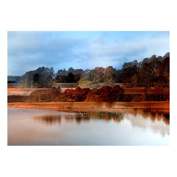 Wetlands at Lymington