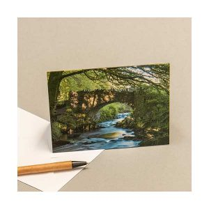 Greeting Card Water Trees